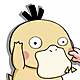 金毛可达鸭